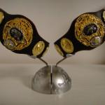 PWF認定 世界タッグ チャンピオンベルト