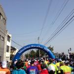 徳島マラソン 2015