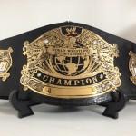 WWE 統一ベルト キッズサイズ
