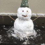 雪だるま vol.8